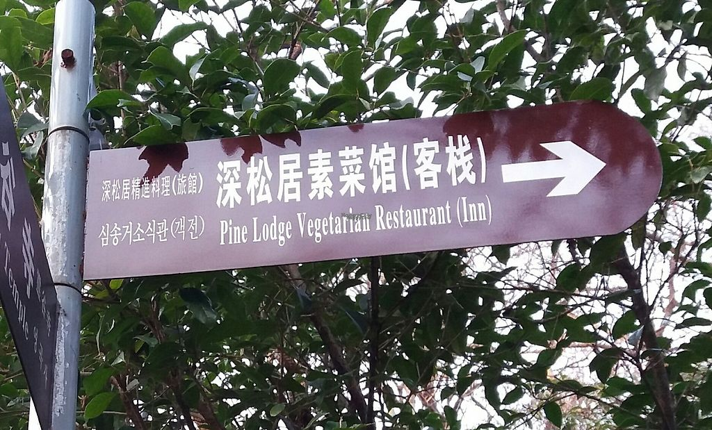 """Photo of Pine Lodge Vegetarian Restaurant  by <a href=""""/members/profile/huawhenua"""">huawhenua</a> <br/>Sign pointing the way to Vegetarian Restaurant near Linggu Temple, Nanjing <br/> March 2, 2017  - <a href='/contact/abuse/image/18440/231732'>Report</a>"""