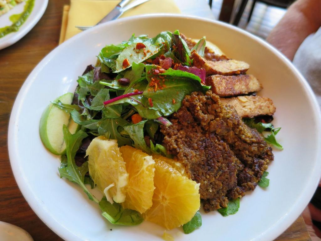 "Photo of Plum Bistro  by <a href=""/members/profile/vegan%20frog"">vegan frog</a> <br/>Mama Africa salad <br/> July 25, 2015  - <a href='/contact/abuse/image/18615/110954'>Report</a>"