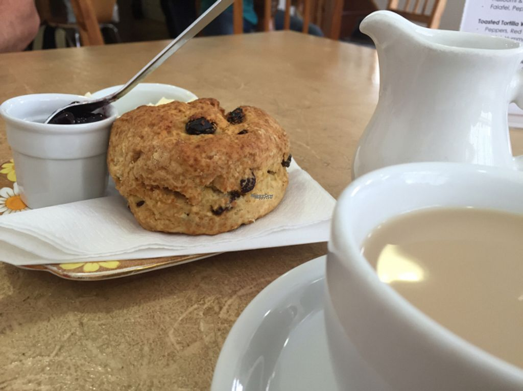 """Photo of Nourish  by <a href=""""/members/profile/NatalieDowelMcIntosh"""">NatalieDowelMcIntosh</a> <br/>Vegan fruit scones  <br/> August 16, 2016  - <a href='/contact/abuse/image/18618/169255'>Report</a>"""