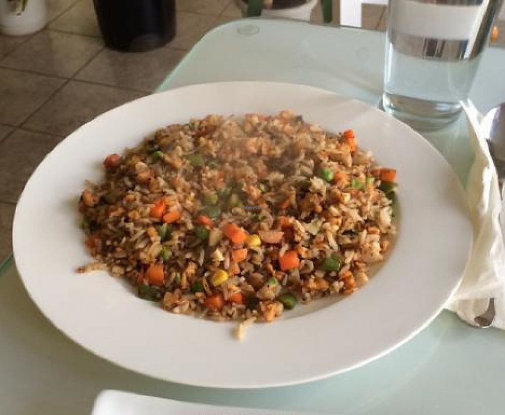 """Photo of Loving Hut - Hamilton St  by <a href=""""/members/profile/Sniperman"""">Sniperman</a> <br/>love the chefs rice! <br/> December 19, 2013  - <a href='/contact/abuse/image/18648/202788'>Report</a>"""