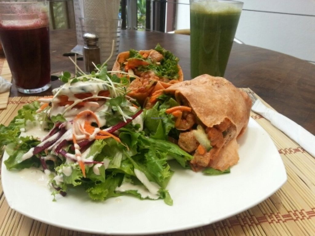 """Photo of Mantras Veggie Cafe and Tea House  by <a href=""""/members/profile/mellyglueckskecks"""">mellyglueckskecks</a> <br/>Vegan Wrap <br/> March 22, 2016  - <a href='/contact/abuse/image/18650/140942'>Report</a>"""
