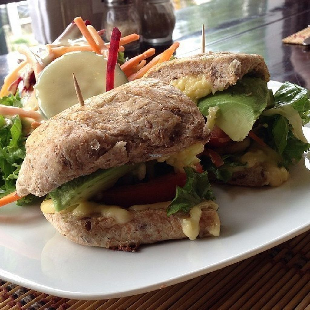 """Photo of Mantras Veggie Cafe and Tea House  by <a href=""""/members/profile/Longina"""">Longina</a> <br/>Tico Sandwich <br/> August 8, 2016  - <a href='/contact/abuse/image/18650/166988'>Report</a>"""