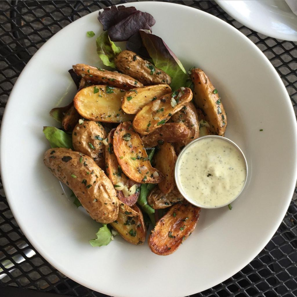 """Photo of Blossoming Lotus  by <a href=""""/members/profile/AmeliaC"""">AmeliaC</a> <br/>Roasted a Fingerling Potatoes with Caprr-Dill Dip <br/> July 14, 2015  - <a href='/contact/abuse/image/18709/109237'>Report</a>"""