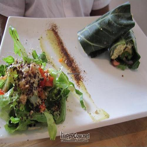 """Photo of Raw Aura  by <a href=""""/members/profile/gabynbrad"""">gabynbrad</a> <br/>falafel wrap <br/> August 7, 2011  - <a href='/contact/abuse/image/18753/9980'>Report</a>"""