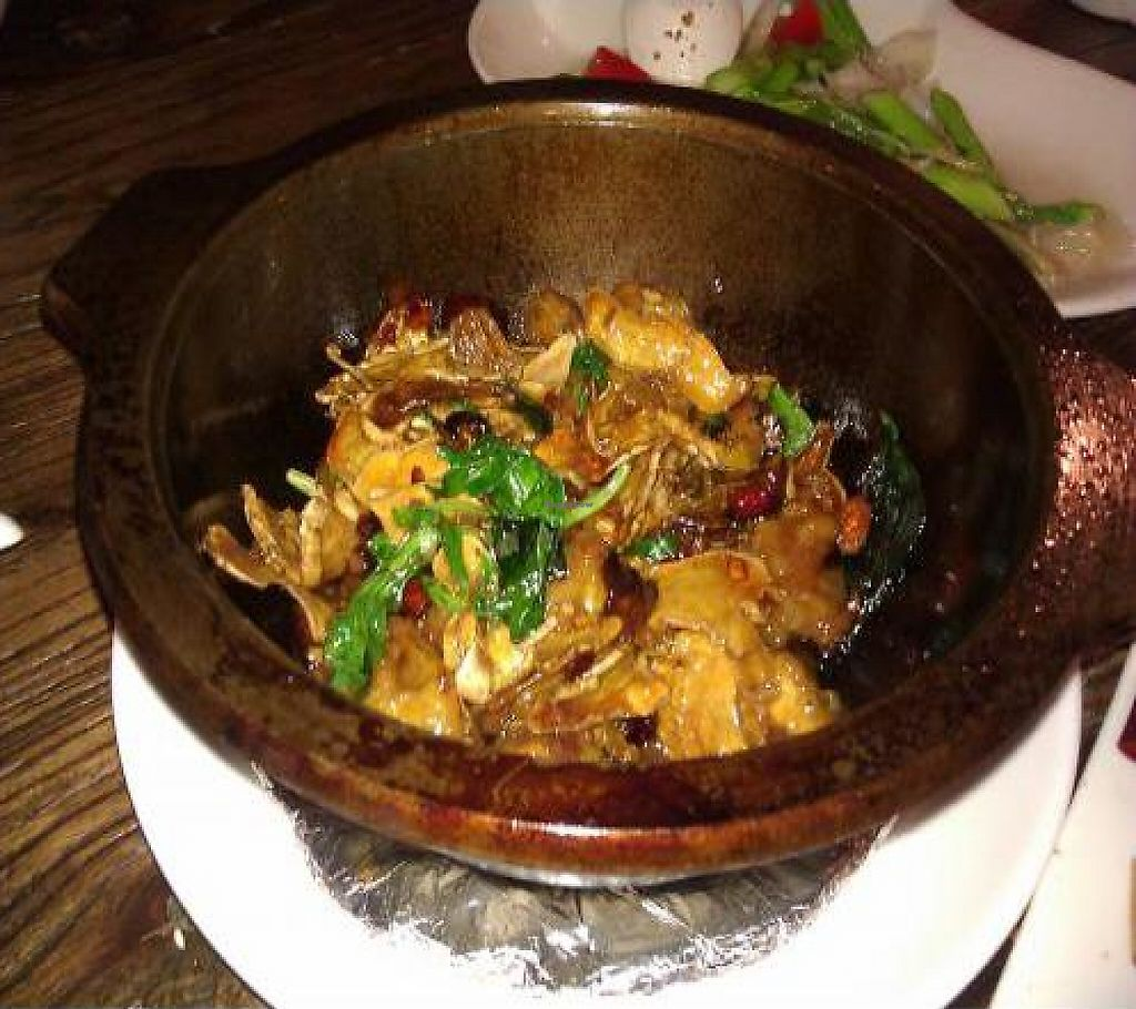 "Photo of Ban Chao Tung Vegetarian  by <a href=""/members/profile/eric"">eric</a> <br/>Mushroom dish <br/> October 27, 2011  - <a href='/contact/abuse/image/18769/188406'>Report</a>"