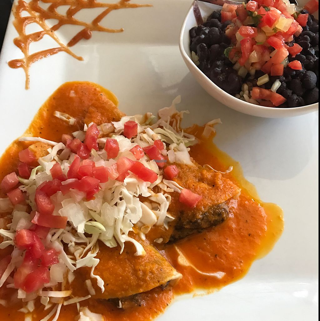 "Photo of De La Vega  by <a href=""/members/profile/VeganskisLove"">VeganskisLove</a> <br/>vegan enchiladas YUM!!! <br/> December 29, 2016  - <a href='/contact/abuse/image/18834/205847'>Report</a>"