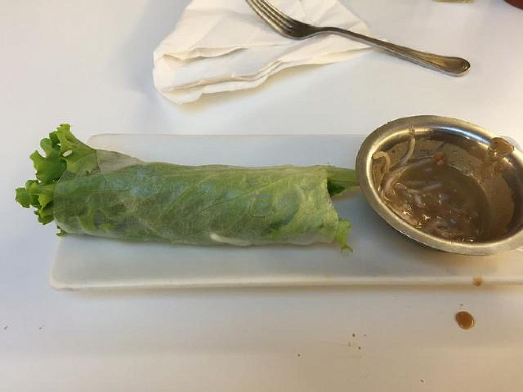 Photo of Loving Hut  by drees2014 <br/>basil rolls <br/> November 3, 2014  - <a href='/contact/abuse/image/18893/84518'>Report</a>