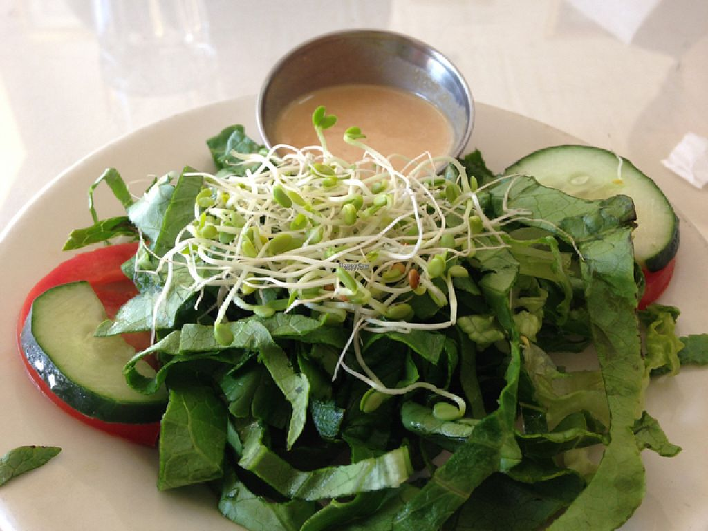 "Photo of Soul Vegetarian - Highland  by <a href=""/members/profile/calamaestra"">calamaestra</a> <br/>side salad <br/> August 1, 2016  - <a href='/contact/abuse/image/1890/164012'>Report</a>"