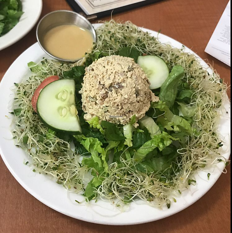 "Photo of Soul Vegetarian - Highland  by <a href=""/members/profile/Robinpring"">Robinpring</a> <br/>no-egg salad  <br/> July 10, 2017  - <a href='/contact/abuse/image/1890/278665'>Report</a>"