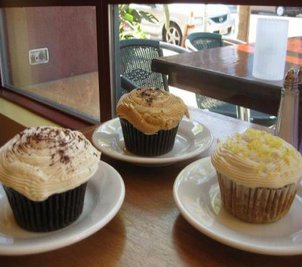 """Photo of Lotus Cafe and Juice Bar  by <a href=""""/members/profile/johanna~Lotus%20Cafe"""">johanna~Lotus Cafe</a> <br/>Yummy homemade vegan cupcakes baked fresh each morning in our kitchen...  Our newest flavor is Lemon Macadamia <br/> February 25, 2012  - <a href='/contact/abuse/image/18943/223274'>Report</a>"""