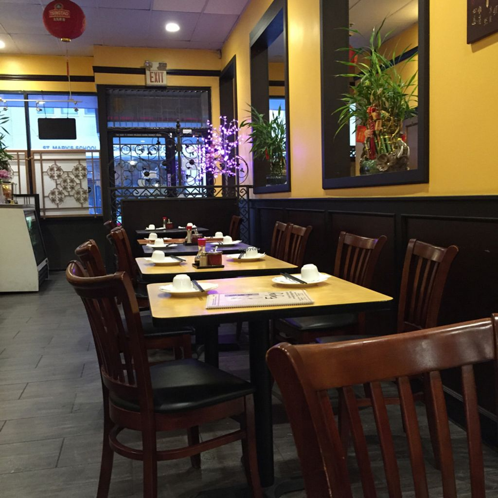 """Photo of Enjoy Vegetarian Restaurant - Financial District  by <a href=""""/members/profile/SavoyTruffle"""">SavoyTruffle</a> <br/>interior <br/> July 19, 2016  - <a href='/contact/abuse/image/19009/160806'>Report</a>"""