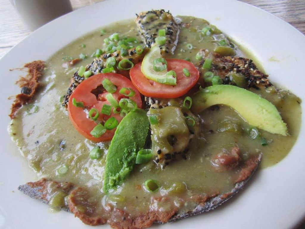 "Photo of Adam's Mountain Cafe  by <a href=""/members/profile/Redheaded%20Vegan"">Redheaded Vegan</a> <br/>Tempe dish smothered in green chile <br/> April 12, 2014  - <a href='/contact/abuse/image/19147/67544'>Report</a>"