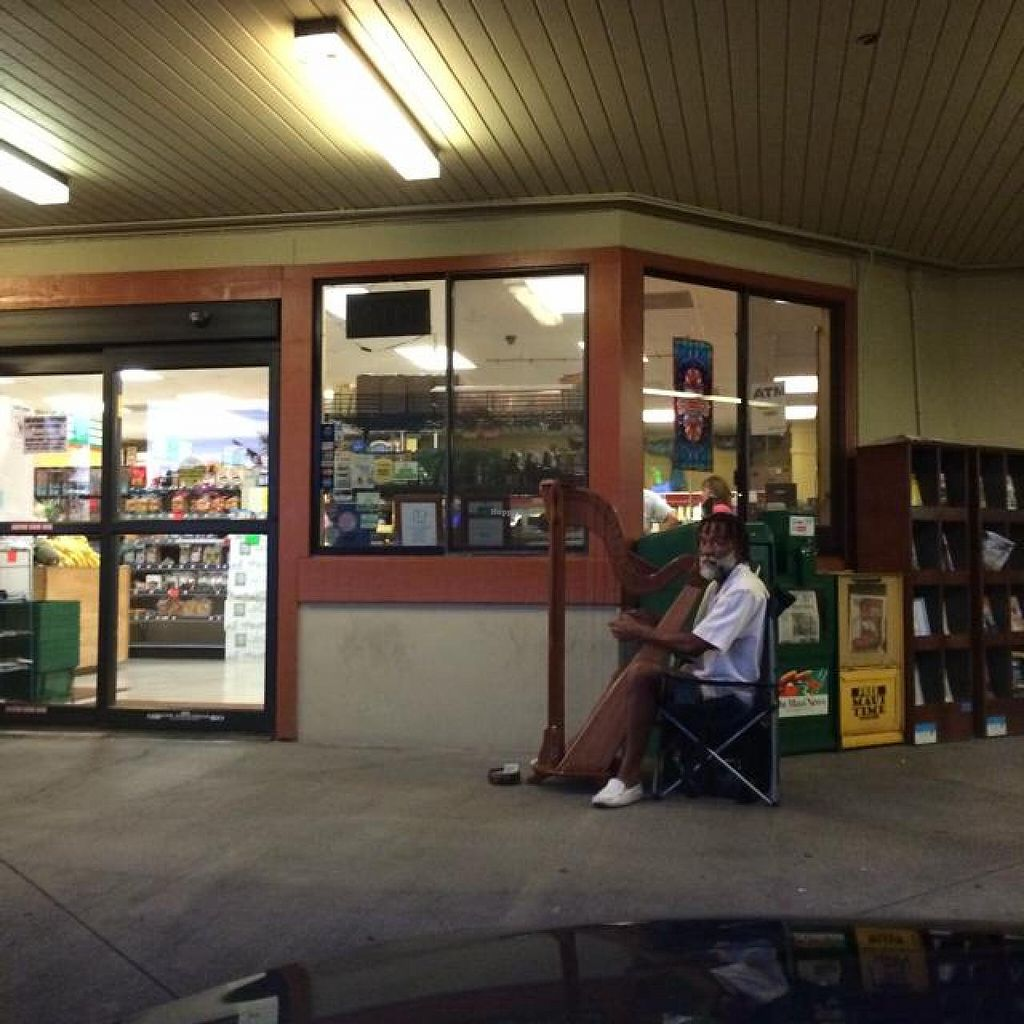 "Photo of Hawaiian Moons Market  by <a href=""/members/profile/tryn%20ny%20ty"">tryn ny ty</a> <br/>harp man outside the entrance <br/> June 28, 2014  - <a href='/contact/abuse/image/1920/72910'>Report</a>"