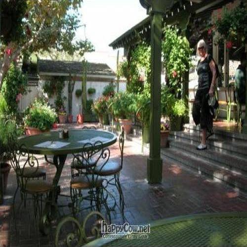 "Photo of Jardines de San Juan  by <a href=""/members/profile/larryabailey"">larryabailey</a> <br/>Back patio of Jardines de San Juan <br/> October 28, 2009  - <a href='/contact/abuse/image/19237/2872'>Report</a>"