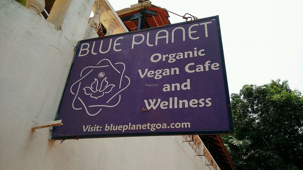"""Photo of Blue Planet  by <a href=""""/members/profile/CompationateLouis"""">CompationateLouis</a> <br/>Not actually vegan <br/> April 17, 2018  - <a href='/contact/abuse/image/19477/387055'>Report</a>"""