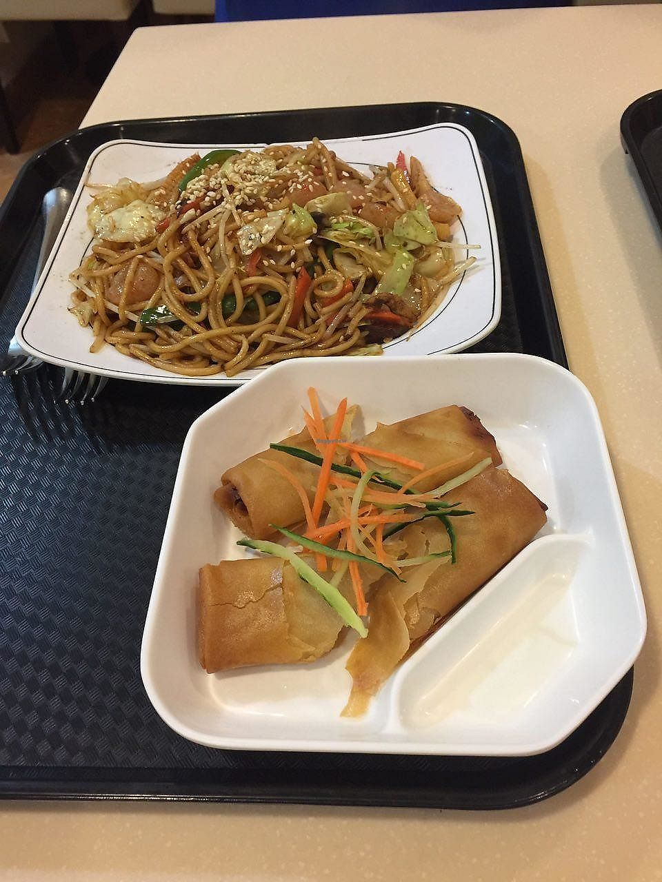"""Photo of Loving Hut - Wan Chai  by <a href=""""/members/profile/FlokiTheCat"""">FlokiTheCat</a> <br/>Spring rolls and fried noodles with XO sauce <br/> June 29, 2017  - <a href='/contact/abuse/image/19570/274645'>Report</a>"""