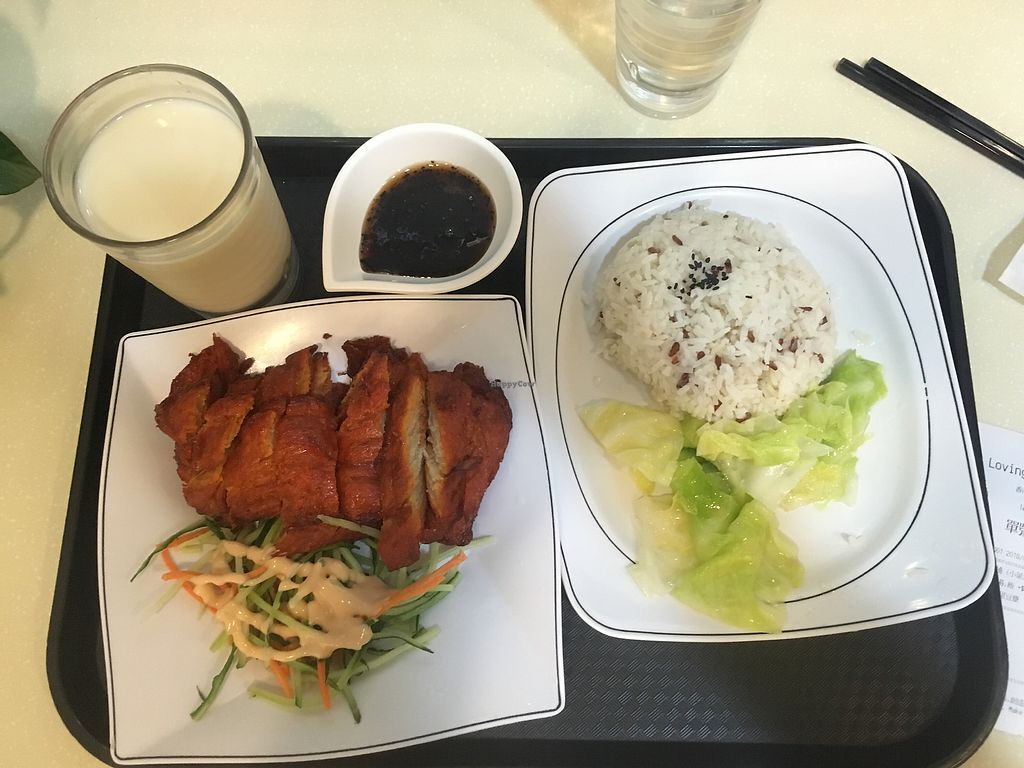 """Photo of Loving Hut - Wan Chai  by <a href=""""/members/profile/amandals"""">amandals</a> <br/>Char Sui fillet <br/> April 19, 2018  - <a href='/contact/abuse/image/19570/388023'>Report</a>"""