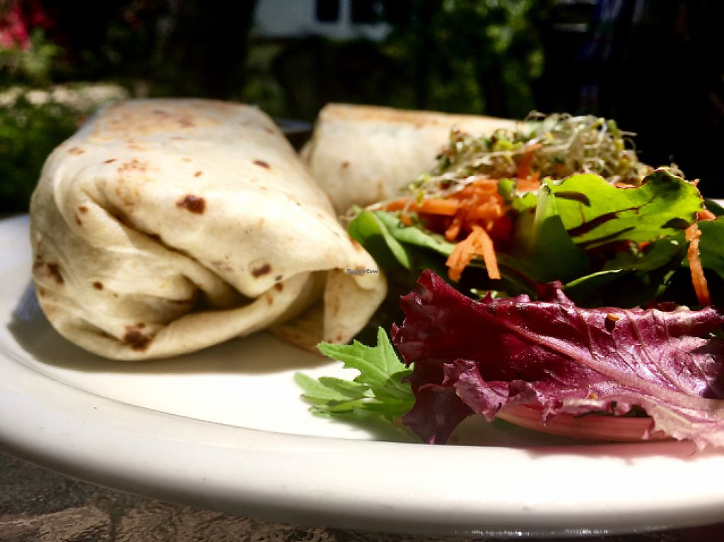 """Photo of Bliss Cafe  by <a href=""""/members/profile/milos99"""">milos99</a> <br/>kalefornia pesto burrito <br/> May 20, 2017  - <a href='/contact/abuse/image/19617/260663'>Report</a>"""
