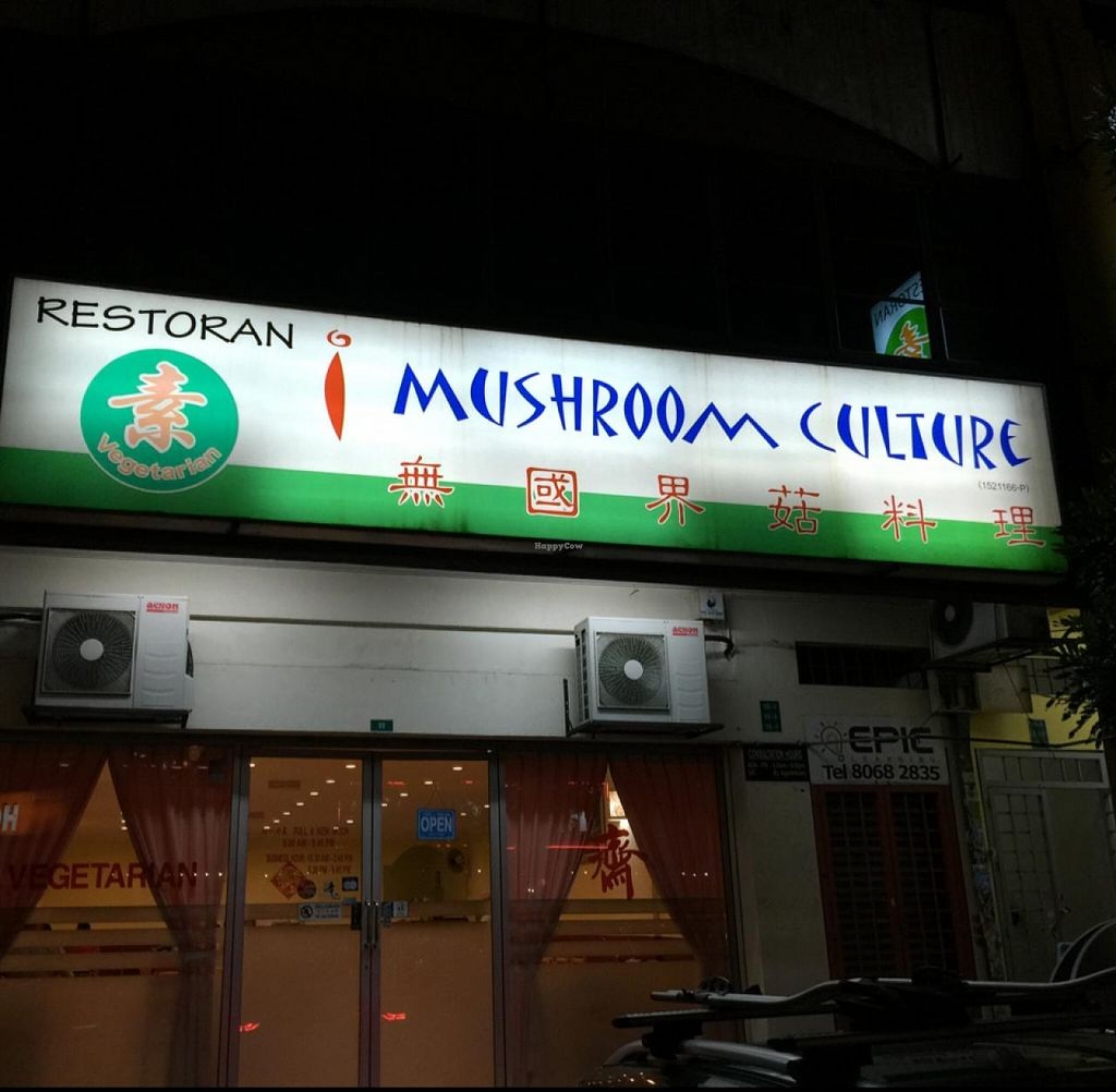 """Photo of Mushroom Culture  by <a href=""""/members/profile/macnothi"""">macnothi</a> <br/>outside <br/> June 25, 2015  - <a href='/contact/abuse/image/19725/107236'>Report</a>"""
