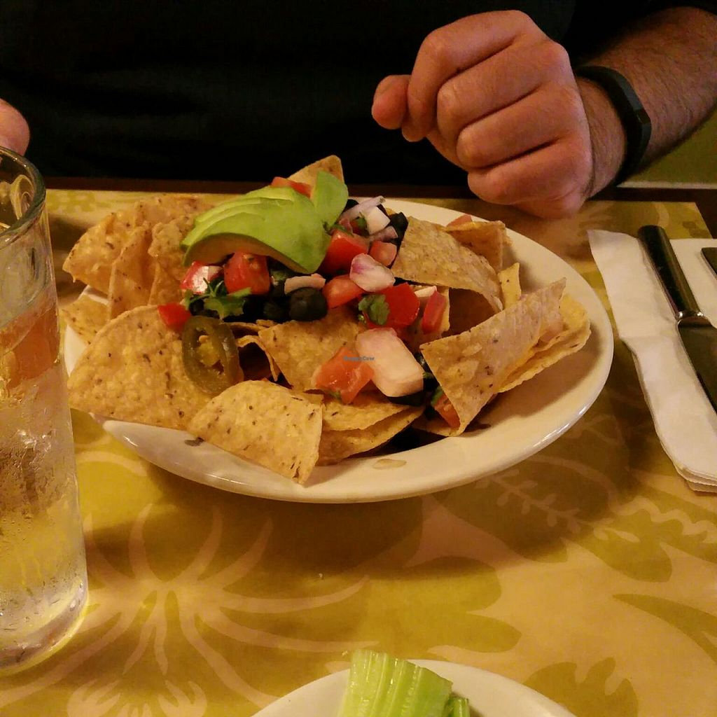 """Photo of The Green Owl Cafe  by <a href=""""/members/profile/Lindsey"""">Lindsey</a> <br/>Macho Nachos - a little lacking in toppings, especially vegan cheese, missing vegan sour cream - hopefully they'll fix this next time - they are really good when they're made with more toppings <br/> July 7, 2015  - <a href='/contact/abuse/image/19743/108516'>Report</a>"""