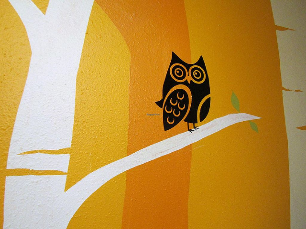 Photo of The Green Owl Cafe  by RamblingVegans <br/>The wall in The Green Owl.   <br/> March 1, 2014  - <a href='/contact/abuse/image/19743/65053'>Report</a>