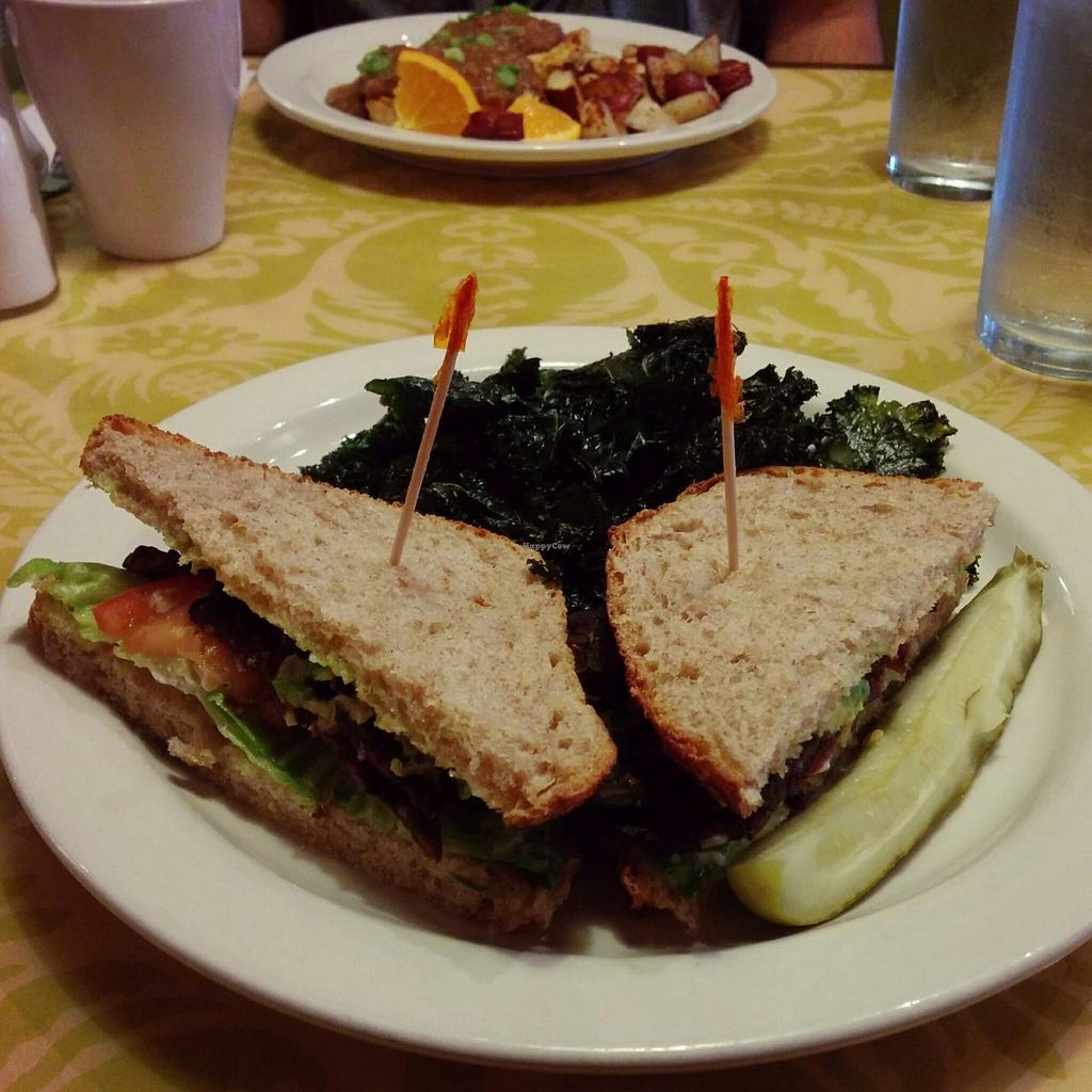 """Photo of The Green Owl Cafe  by <a href=""""/members/profile/makemenervous"""">makemenervous</a> <br/>TLT (Tempeh Lettuce Tomato) with Kale Chips <br/> March 26, 2015  - <a href='/contact/abuse/image/19743/97074'>Report</a>"""
