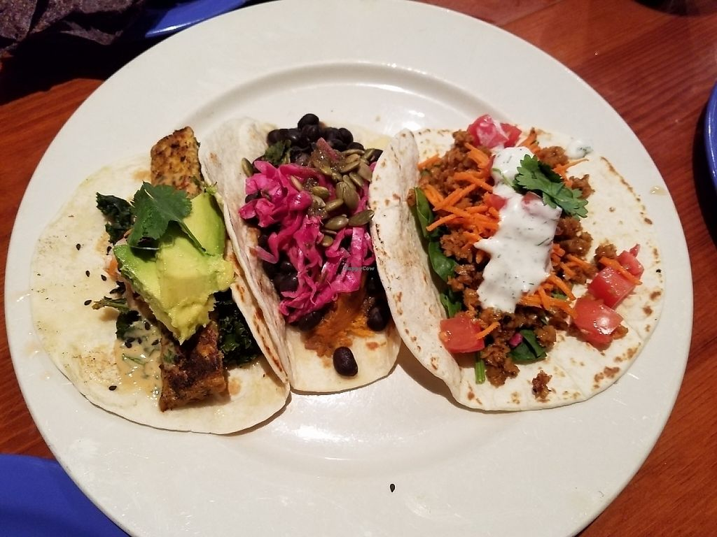 """Photo of The Wild Cow  by <a href=""""/members/profile/Courtneybouch10"""">Courtneybouch10</a> <br/>Taco Sampler <br/> May 7, 2017  - <a href='/contact/abuse/image/19759/256959'>Report</a>"""
