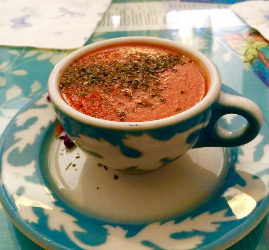 """Photo of Morning Glory Cafe  by <a href=""""/members/profile/StingRey"""">StingRey</a> <br/>Tomato Cashew Soup.  Vegan Goodness! <br/> February 11, 2015  - <a href='/contact/abuse/image/19776/190289'>Report</a>"""