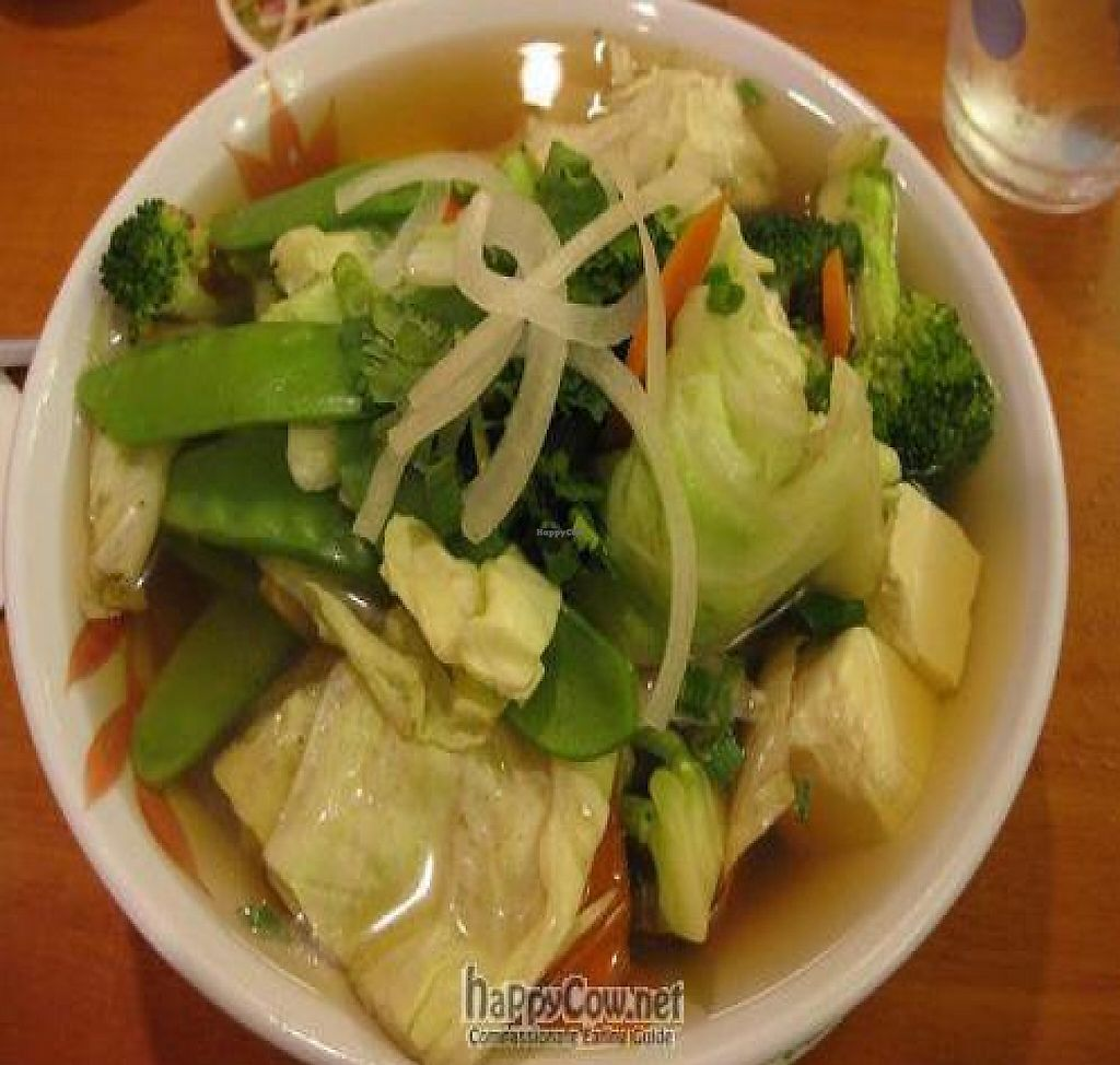 """Photo of Green Papaya Vietnamese Vegetarian  by <a href=""""/members/profile/cvxmelody"""">cvxmelody</a> <br/> July 2, 2010  - <a href='/contact/abuse/image/19851/199274'>Report</a>"""