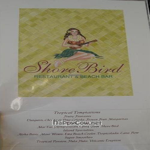 """Photo of CLOSED: Shore Bird Restaurant and Beach Bar  by <a href=""""/members/profile/cvxmelody"""">cvxmelody</a> <br/> July 2, 2010  - <a href='/contact/abuse/image/19856/5025'>Report</a>"""