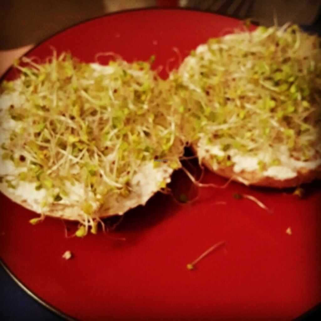 """Photo of Trader Joe's  by <a href=""""/members/profile/VegManda"""">VegManda</a> <br/>Sprouted Wheat Bagels, Vegan Cream Cheese  <br/> March 19, 2016  - <a href='/contact/abuse/image/20167/140640'>Report</a>"""