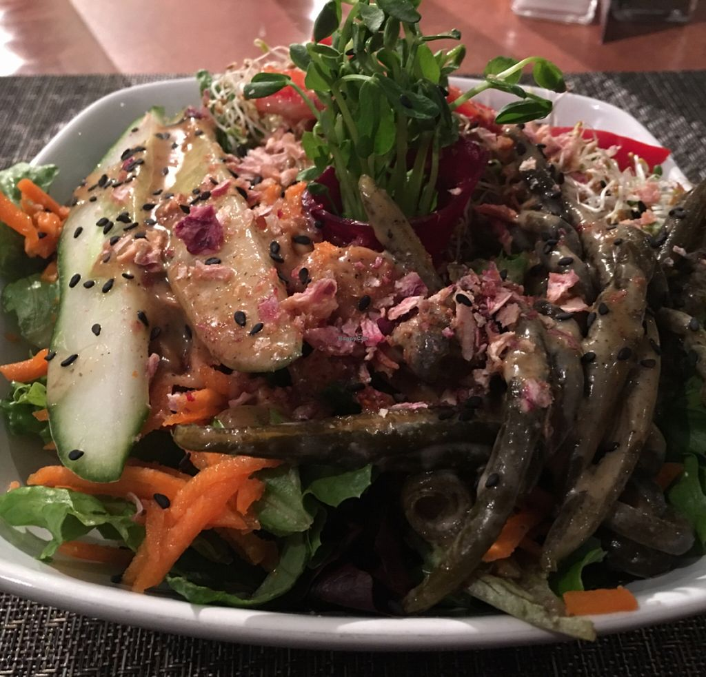 "Photo of La Belle Verte  by <a href=""/members/profile/gwild"">gwild</a> <br/>Neptune Salad <br/> November 21, 2015  - <a href='/contact/abuse/image/20235/125728'>Report</a>"