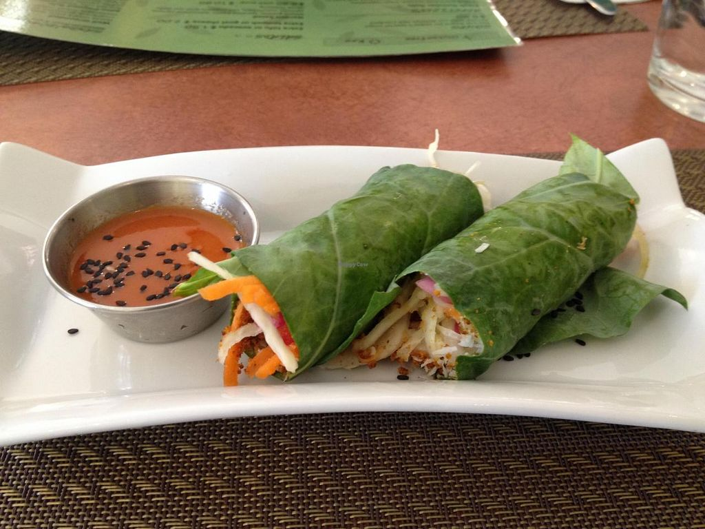 "Photo of La Belle Verte  by <a href=""/members/profile/bananah6"">bananah6</a> <br/>Yin Yang Rolls with chili sauce <br/> July 7, 2014  - <a href='/contact/abuse/image/20235/73449'>Report</a>"