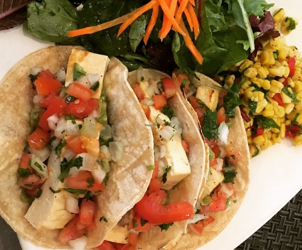 """Photo of The Cafe at Books and Books  by <a href=""""/members/profile/DebbyZebby"""">DebbyZebby</a> <br/>Soft tacos with tofu and tomato filling. Mixed greens and corn salad (vegan) <br/> June 20, 2016  - <a href='/contact/abuse/image/20246/196733'>Report</a>"""