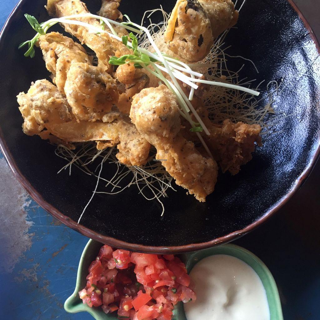 """Photo of Yong Green Food  by <a href=""""/members/profile/Rabbitnom"""">Rabbitnom</a> <br/>oyster mushroom calamari  <br/> May 13, 2016  - <a href='/contact/abuse/image/20267/148730'>Report</a>"""