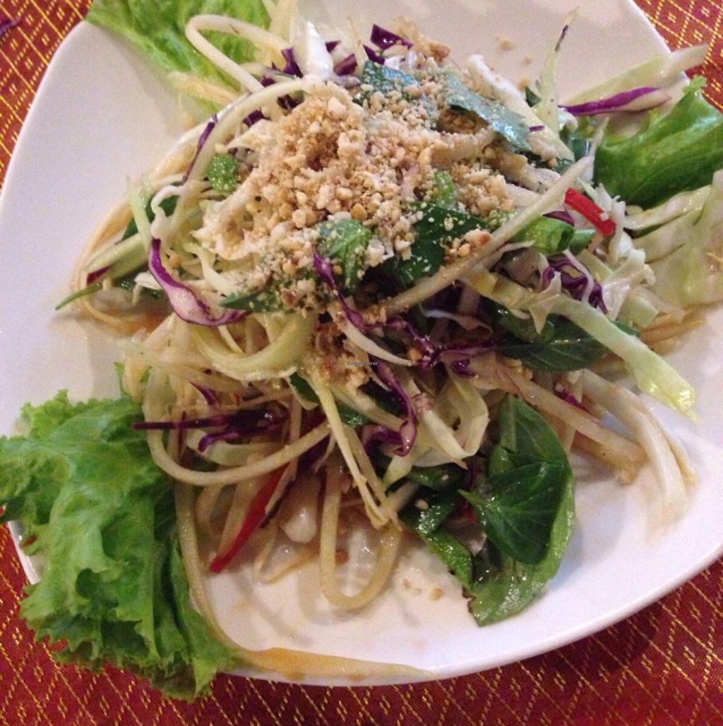 """Photo of Peace Cafe  by <a href=""""/members/profile/Wolfonion"""">Wolfonion</a> <br/>papaya salad from cookery course <br/> December 31, 2015  - <a href='/contact/abuse/image/20271/130450'>Report</a>"""