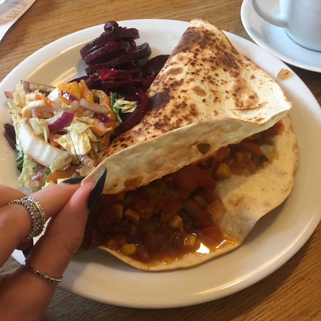 """Photo of Glonojad  by <a href=""""/members/profile/willowgrace95"""">willowgrace95</a> <br/>Vegan burrito with salad <br/> November 14, 2017  - <a href='/contact/abuse/image/20526/325598'>Report</a>"""