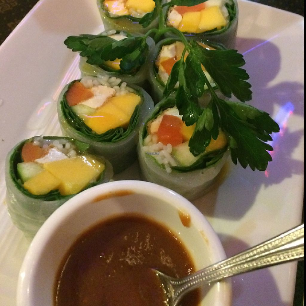 """Photo of The Basil  by <a href=""""/members/profile/Brizzy09"""">Brizzy09</a> <br/>Mango Rolls <br/> March 9, 2017  - <a href='/contact/abuse/image/20600/234389'>Report</a>"""