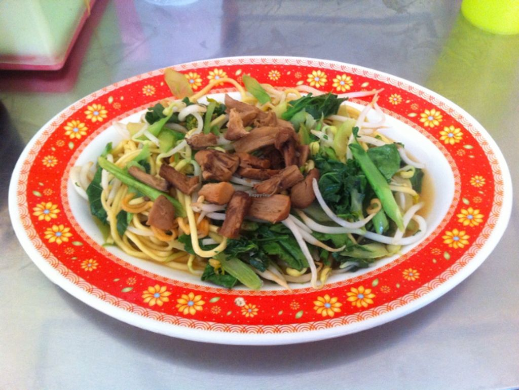 "Photo of Vegetarian Food  by <a href=""/members/profile/Arvid"">Arvid</a> <br/>Fried noodles with extra vegetables <br/> February 6, 2016  - <a href='/contact/abuse/image/20685/135223'>Report</a>"