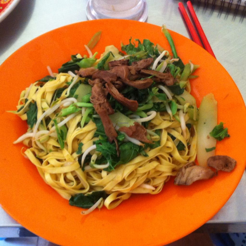 "Photo of Vegetarian Food  by <a href=""/members/profile/Arvid"">Arvid</a> <br/>Fried noodles <br/> February 6, 2016  - <a href='/contact/abuse/image/20685/135224'>Report</a>"