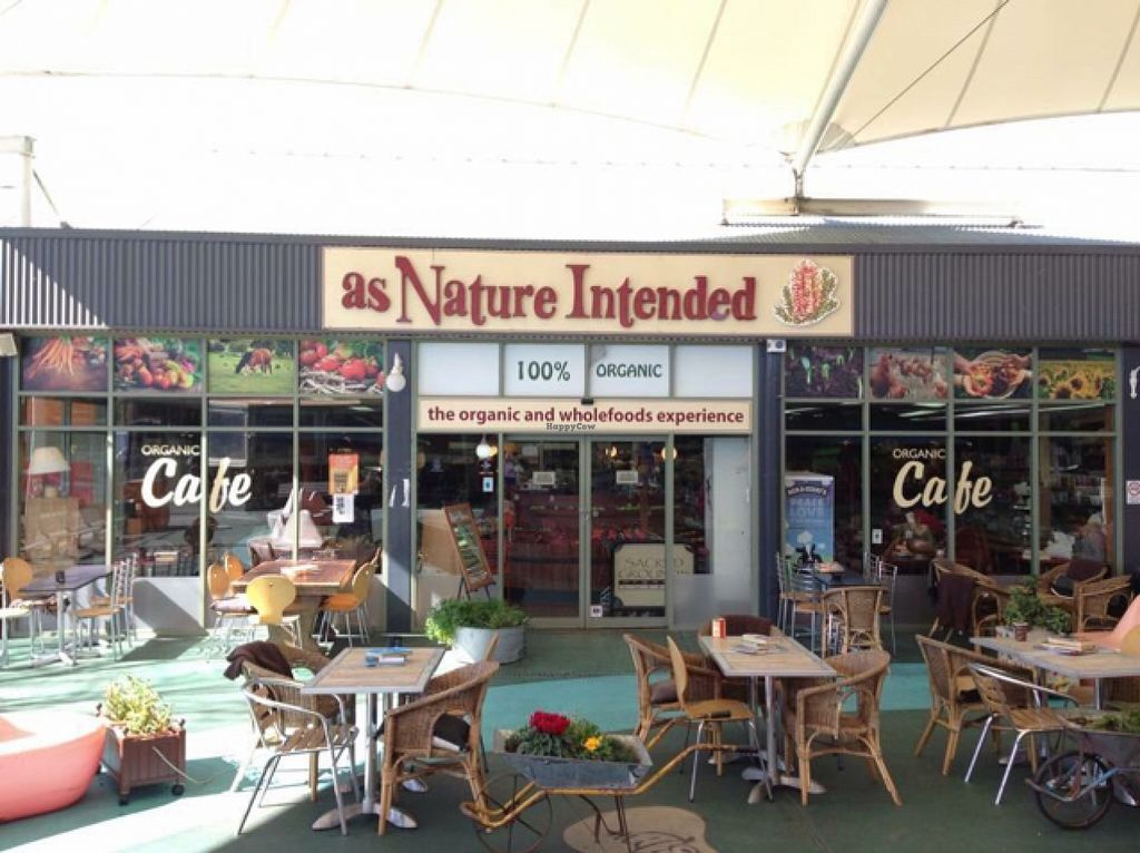 """Photo of As Nature Intended Cafe  by <a href=""""/members/profile/FiCarolineGill"""">FiCarolineGill</a> <br/>Our setup <br/> November 3, 2015  - <a href='/contact/abuse/image/20772/123764'>Report</a>"""