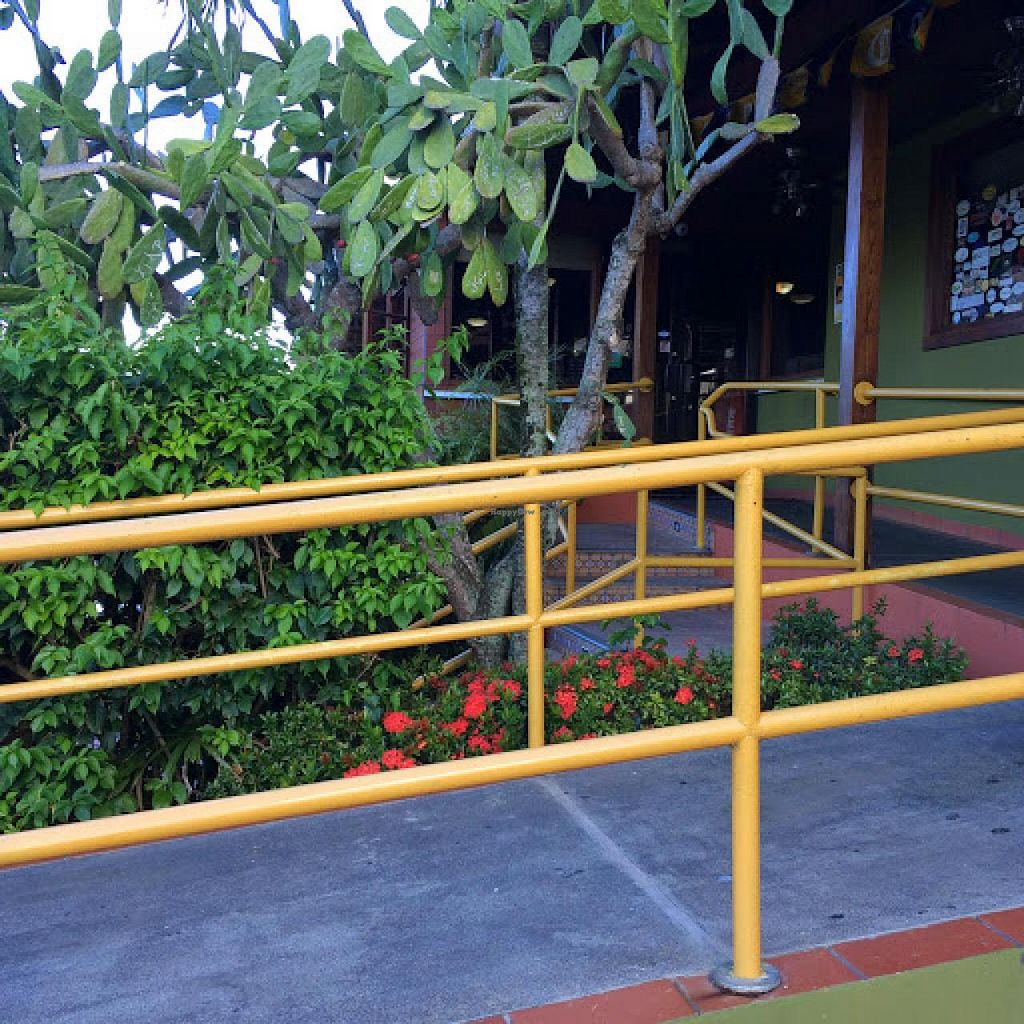"""Photo of Lolita's Mexican Restaurant  by <a href=""""/members/profile/Tamilyn"""">Tamilyn</a> <br/>Side view <br/> August 10, 2014  - <a href='/contact/abuse/image/20787/76574'>Report</a>"""