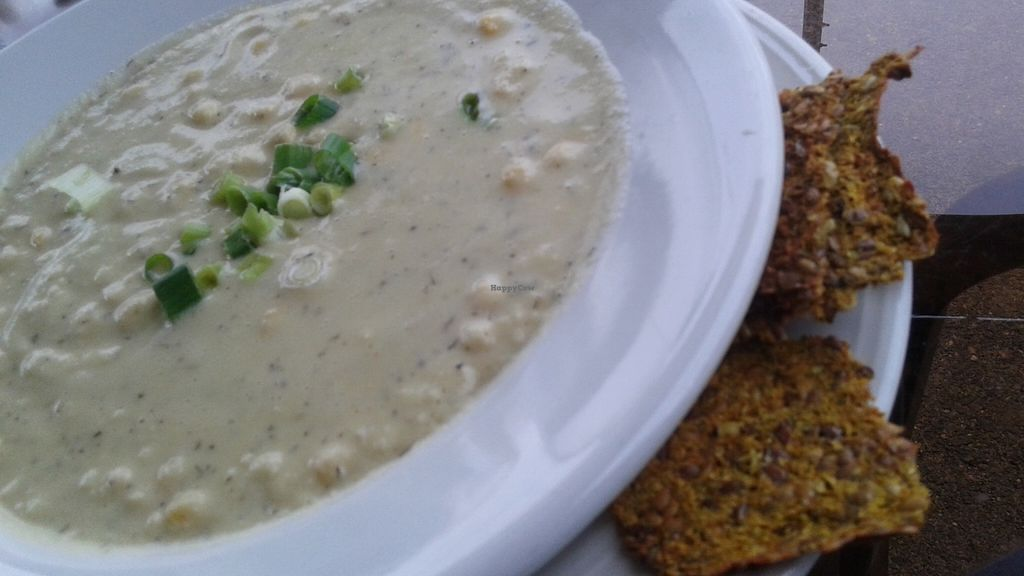 """Photo of Organic Garden Cafe  by <a href=""""/members/profile/veganri"""">veganri</a> <br/>Almond Based Corn Chowder! <br/> July 3, 2016  - <a href='/contact/abuse/image/2090/157512'>Report</a>"""