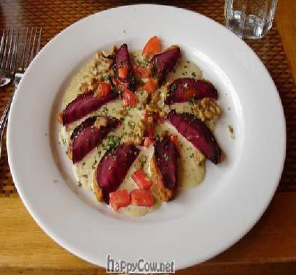 """Photo of Organic Garden Cafe  by <a href=""""/members/profile/will-travel-for-food"""">will-travel-for-food</a> <br/>Nut butter 'squash' ravioli with cashew 'alfredo' <br/> October 22, 2009  - <a href='/contact/abuse/image/2090/202412'>Report</a>"""