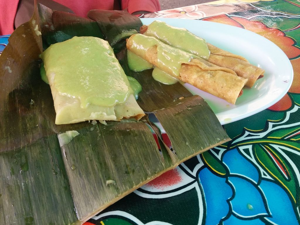 "Photo of Flacos  by <a href=""/members/profile/MizzB"">MizzB</a> <br/>2 taquitos - textured soy protein rolled in corn tortilla & fried, with banana leaf tamale  <br/> May 22, 2016  - <a href='/contact/abuse/image/20980/150316'>Report</a>"