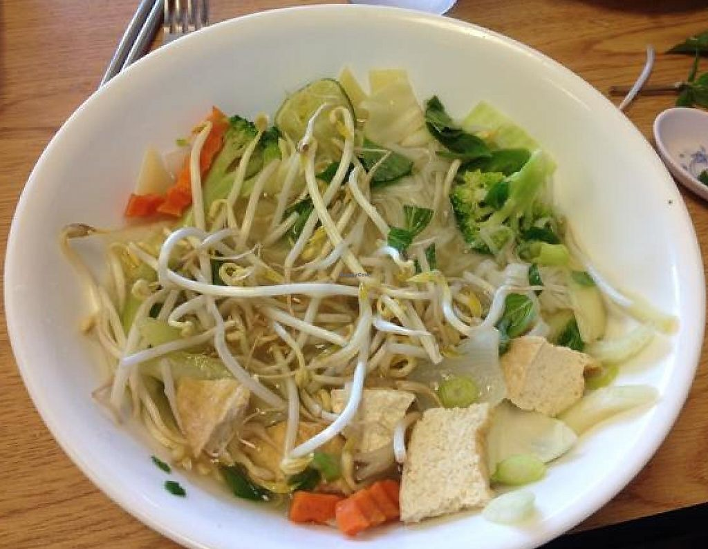 "Photo of Pho Hanoi  by <a href=""/members/profile/mbentz"">mbentz</a> <br/>veggi pho <br/> August 6, 2014  - <a href='/contact/abuse/image/21020/195900'>Report</a>"