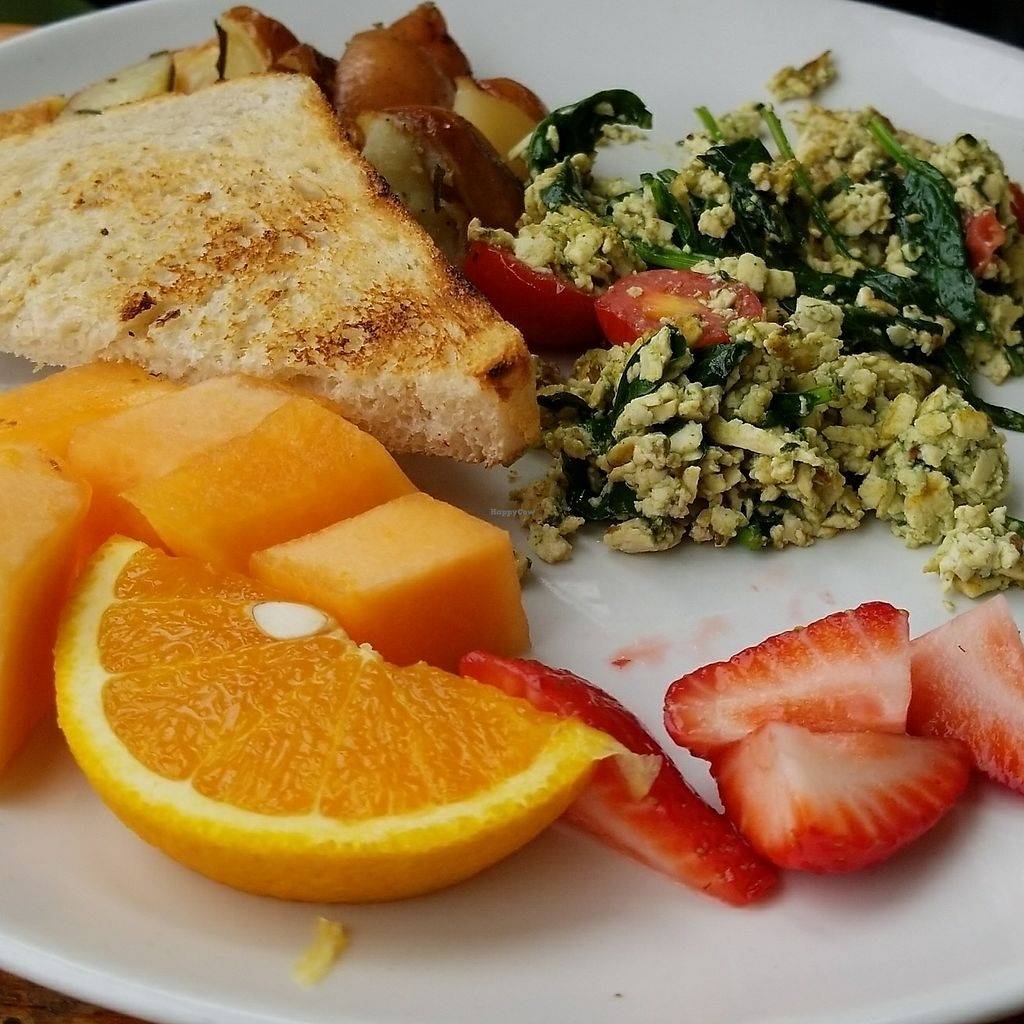 """Photo of The Plant Cafe Organic - Downtown  by <a href=""""/members/profile/FarinMontanez"""">FarinMontanez</a> <br/>Basil pesto tofu scramble  <br/> July 29, 2017  - <a href='/contact/abuse/image/21046/286454'>Report</a>"""