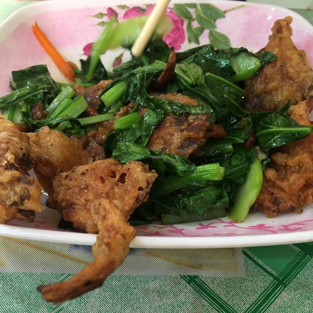 """Photo of Samrup Jay  by <a href=""""/members/profile/bradleybbr"""">bradleybbr</a> <br/>Kale and crispy mushrooms  <br/> February 6, 2017  - <a href='/contact/abuse/image/21054/223526'>Report</a>"""