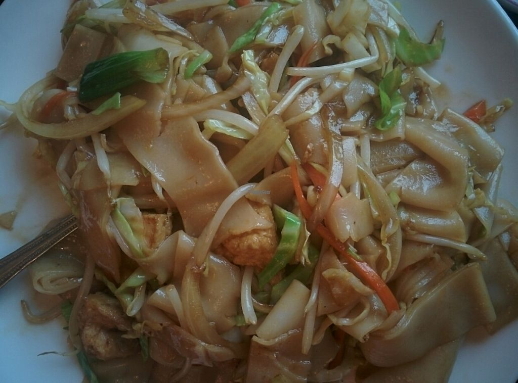 "Photo of Garden Fresh  by <a href=""/members/profile/alexandra_vegan"">alexandra_vegan</a> <br/>chicken chow fun with Tofu instead of chicken (really good) <br/> February 19, 2017  - <a href='/contact/abuse/image/21138/228042'>Report</a>"