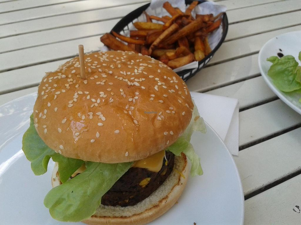 """Photo of CLOSED: Rootz  by <a href=""""/members/profile/jennyc32"""">jennyc32</a> <br/>Vegan burger and square rootz chips <br/> April 28, 2015  - <a href='/contact/abuse/image/21176/100547'>Report</a>"""